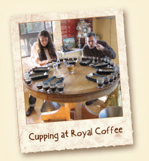 Cupping of Royal Coffee
